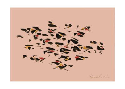 El vuelo de los pajaros </br>2007
