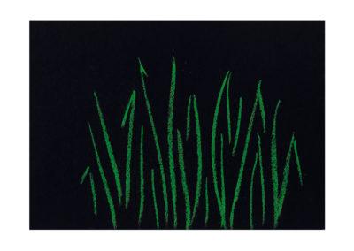 nº 170 Maizal en la noche 2008 Pastel sobre papel 21x30 cm