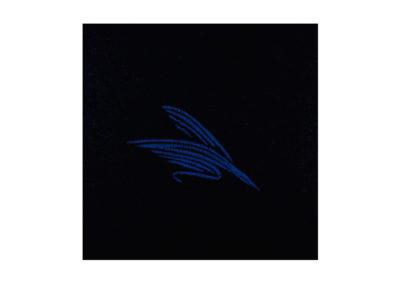 Azul vuelo sobre la noche 2012 Tecnica mixta sobre lienzo 195x195cm
