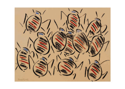 Tropel de pulgones 2006 Carbon y pastel sobre papel 50x65cm