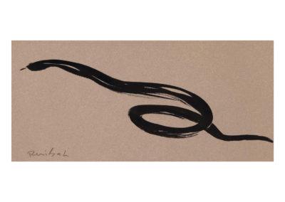 Culebra de agua 2008 Tinta china sobre papel 25x54,5cm