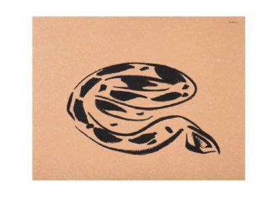La gran serpiente 2012 Tecnica mixta sobre lienzo 150x195cm